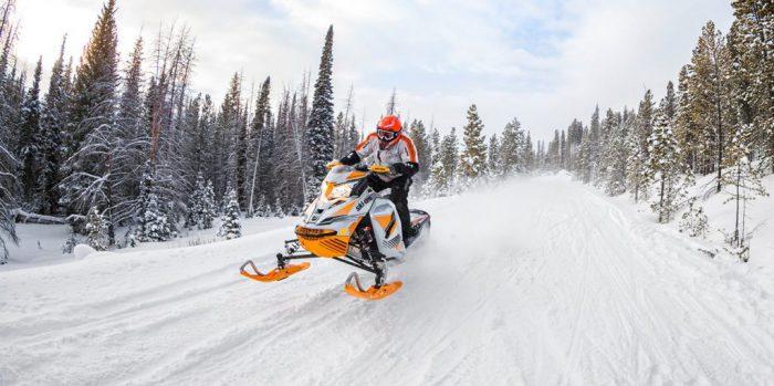 трейлер для снегохода