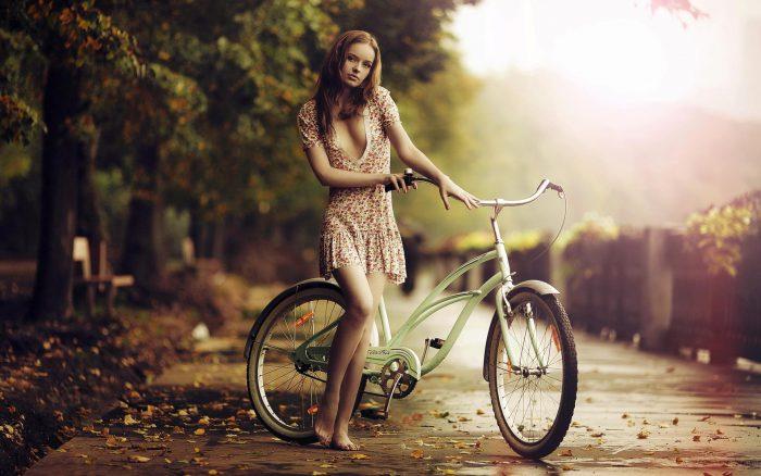 велокрепление для велосипеда на заднюю дверь