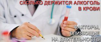 Сколько держится алкоголь в крови человека