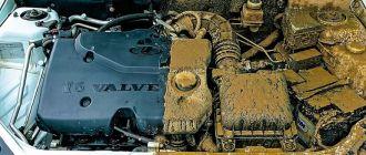чем-очистить-двигатель