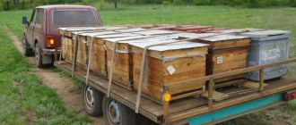 Обзор прицепов пчеловодов для легковых автомобилей